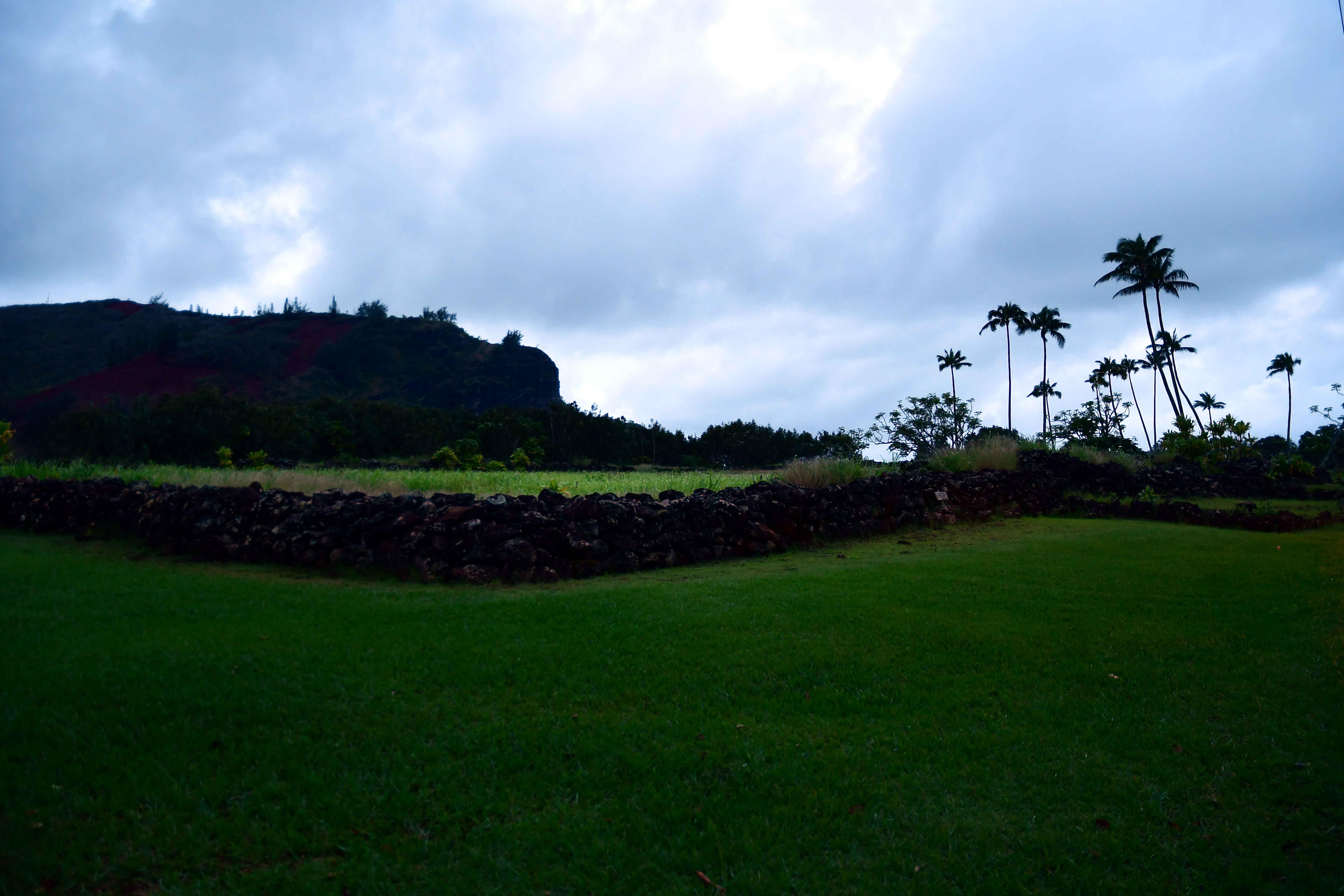 Día 2 – Los Ángeles – Kauai – un polizon en mi maleta